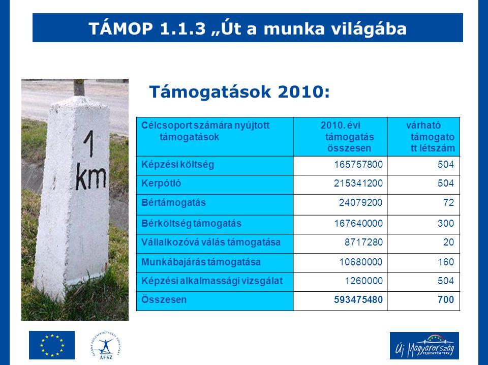 """TÁMOP 1.1.3 """"Út a munka világába Célcsoport számára nyújtott támogatások 2010."""