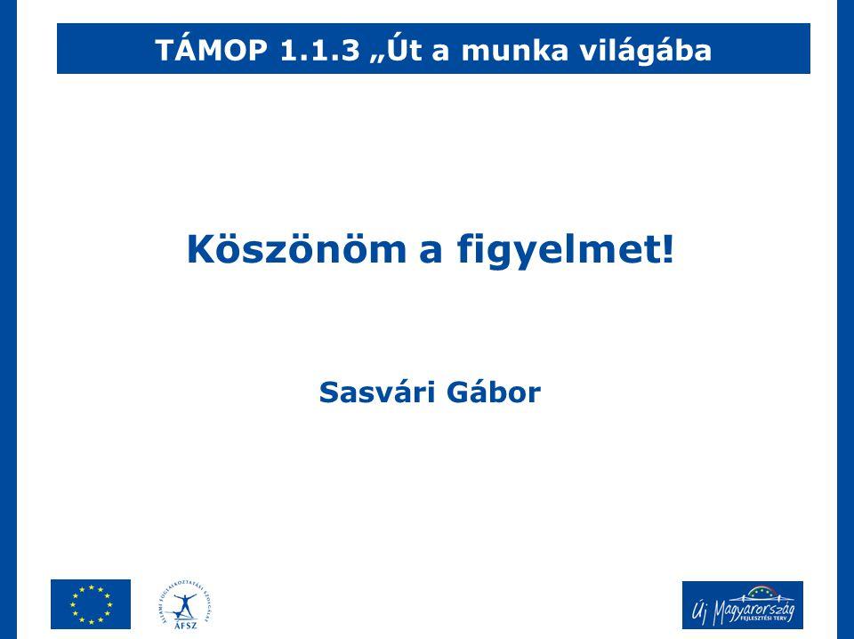 """Köszönöm a figyelmet! Sasvári Gábor TÁMOP 1.1.3 """"Út a munka világába"""