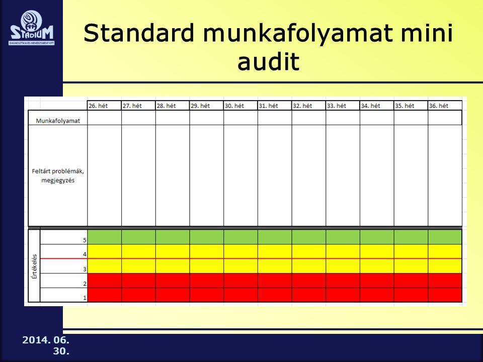 2014. 06. 30. Standard munkafolyamat mini audit