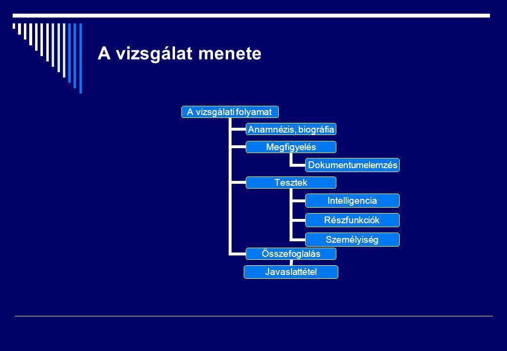 A vizsgálat menete A vizsgálati folyamat Anamnézis, biográfia Megfigyelés Dokumentumelemzés Tesztek Intelligencia Részfunkciók Személyiség Összefoglalás Javaslattétel