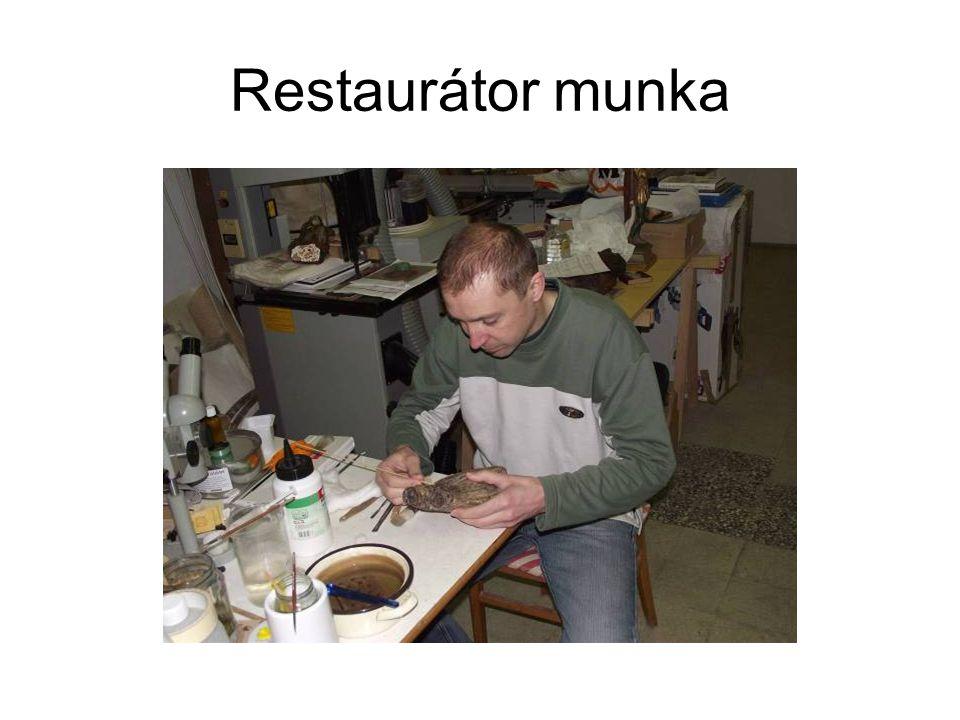 Restaurátor munka