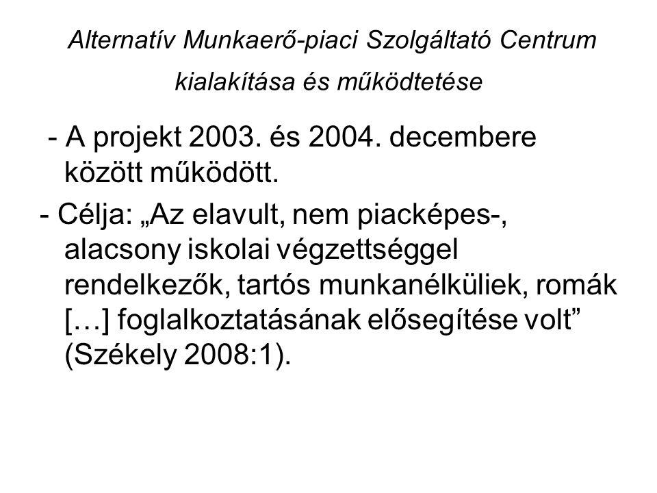 Alternatív Munkaerő-piaci Szolgáltató Centrum kialakítása és működtetése - A projekt 2003.