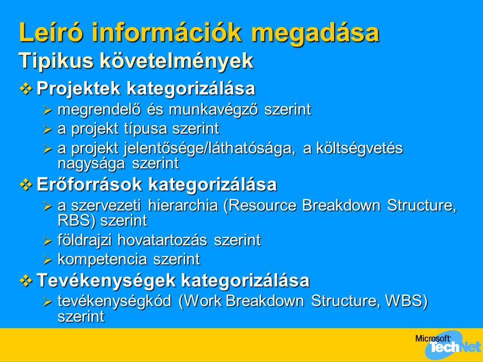 Leíró információk megadása Tipikus követelmények  Projektek kategorizálása  megrendelő és munkavégző szerint  a projekt típusa szerint  a projekt jelentősége/láthatósága, a költségvetés nagysága szerint  Erőforrások kategorizálása  a szervezeti hierarchia (Resource Breakdown Structure, RBS) szerint  földrajzi hovatartozás szerint  kompetencia szerint  Tevékenységek kategorizálása  tevékenységkód (Work Breakdown Structure, WBS) szerint