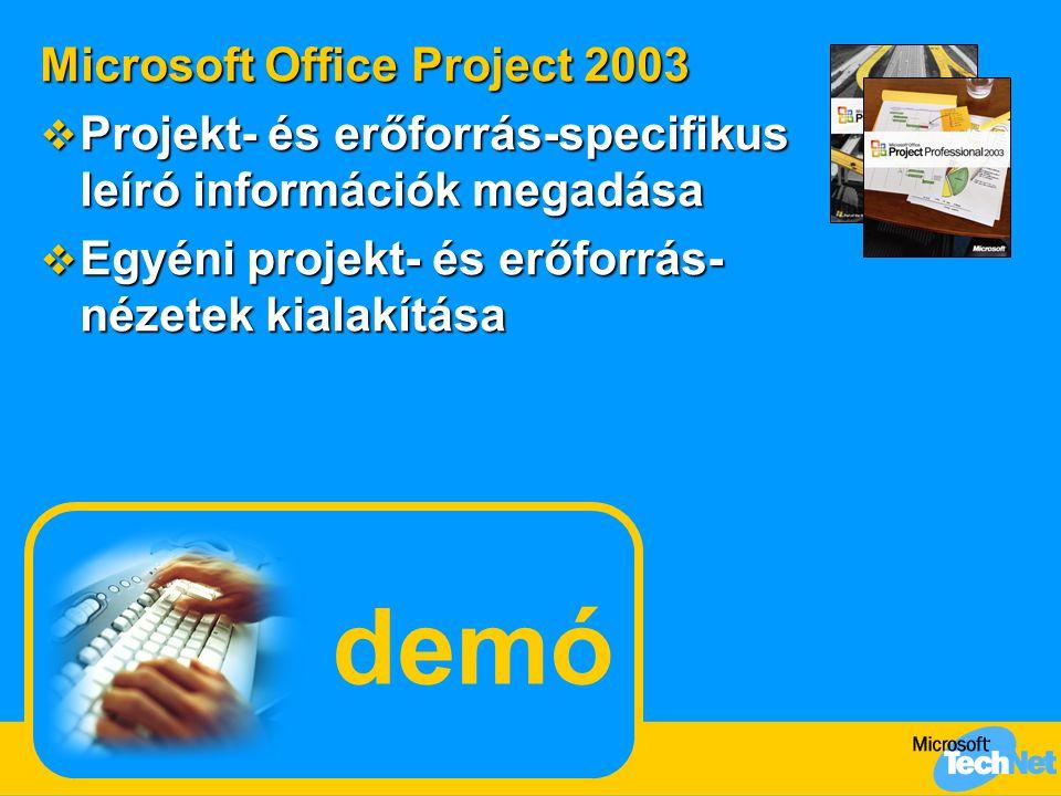 demó Microsoft Office Project 2003  Projekt- és erőforrás-specifikus leíró információk megadása  Egyéni projekt- és erőforrás- nézetek kialakítása