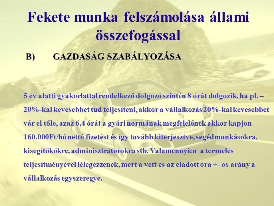 II.Most jön az állam megértése és segítsége Fekete munka felszámolása állami összefogással 2.
