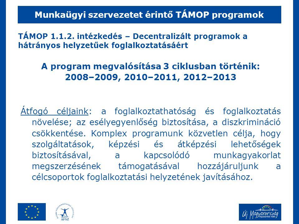 TÁMOP 1.1.2. intézkedés – Decentralizált programok a hátrányos helyzetűek foglalkoztatásáért Munkaügyi szervezetet érintő TÁMOP programok A program me