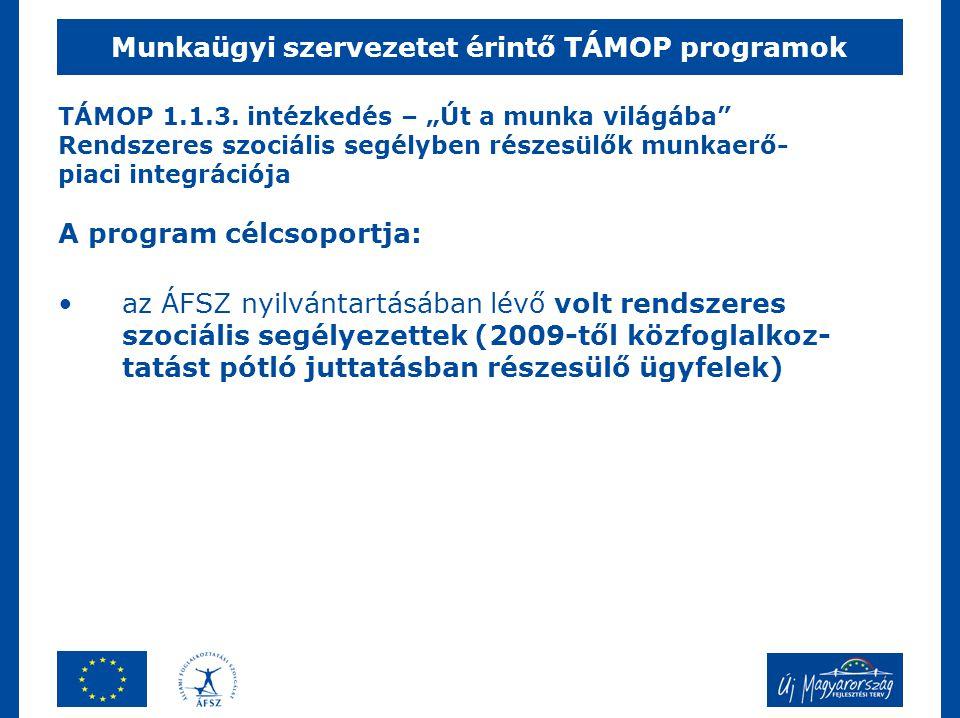 """TÁMOP 1.1.3. intézkedés – """"Út a munka világába"""" Rendszeres szociális segélyben részesülők munkaerő- piaci integrációja A program célcsoportja: •az ÁFS"""