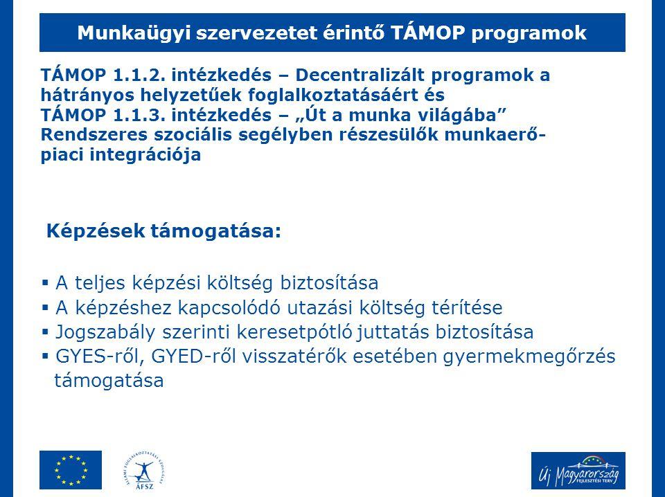 """TÁMOP 1.1.2. intézkedés – Decentralizált programok a hátrányos helyzetűek foglalkoztatásáért és TÁMOP 1.1.3. intézkedés – """"Út a munka világába"""" Rendsz"""