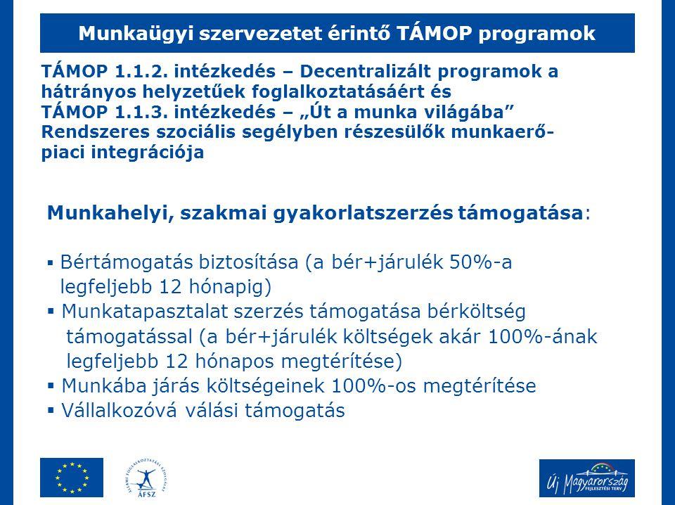 Munkaügyi szervezetet érintő TÁMOP programok Munkahelyi, szakmai gyakorlatszerzés támogatása:  Bértámogatás biztosítása (a bér+járulék 50%-a legfelje