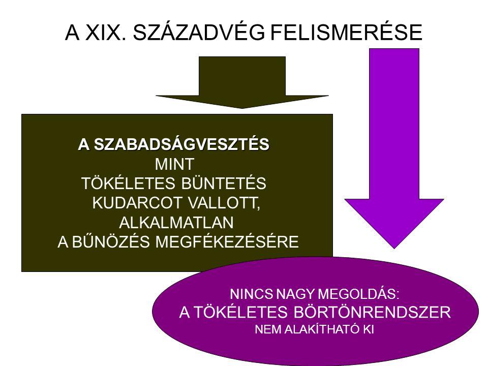 """Btk reform a legutóbbi elképzelés szerint … A RÖVID TARTAMÚ SZABADSÁGVESZTÉS HELYETTESÍTŐI ☛ A SZABADSÁGVESZTÉS KERETÉBEN: - RÉSZBEN FELFÜGGESZTETT ~: ( 5> SZABADSÁGVESZTÉS ESETÉN A '/2 LETÖLTÉSE UTÁN """"ELLENŐRZÖTT SZABADSÁG) ( 5> SZABADSÁGVESZTÉS ESETÉN A '/2 LETÖLTÉSE UTÁN """"ELLENŐRZÖTT SZABADSÁG) ☛ """"KOKTÉL – SZANKCIÓK: A FŐ ÉS MELLÉKBÜNTETÉSEK KÖZÖTTI HATÁRVONAL A FŐ ÉS MELLÉKBÜNTETÉSEK KÖZÖTTI HATÁRVONAL FELSZÁMOLÁSA RÉVÉN … FELSZÁMOLÁSA RÉVÉN …"""
