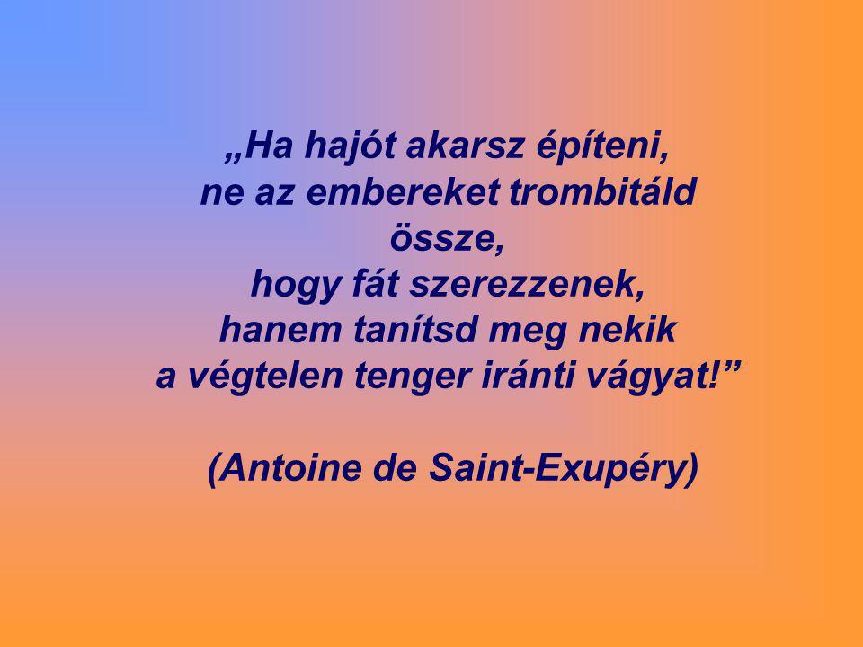 """""""Ha hajót akarsz építeni, ne az embereket trombitáld össze, hogy fát szerezzenek, hanem tanítsd meg nekik a végtelen tenger iránti vágyat!"""" (Antoine d"""