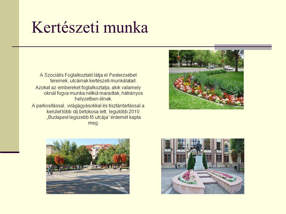 Kertészeti munka A Szociális Foglalkoztató látja el Pesterzsébet tereinek, utcáinak kertészeti munkálatait. Azokat az embereket foglalkoztatja, akik v