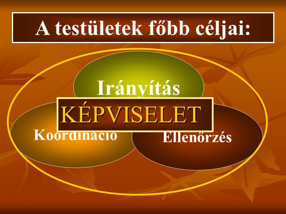 Koordináció Ellenőrzés Irányítás A testületek főbb céljai: KÉPVISELET