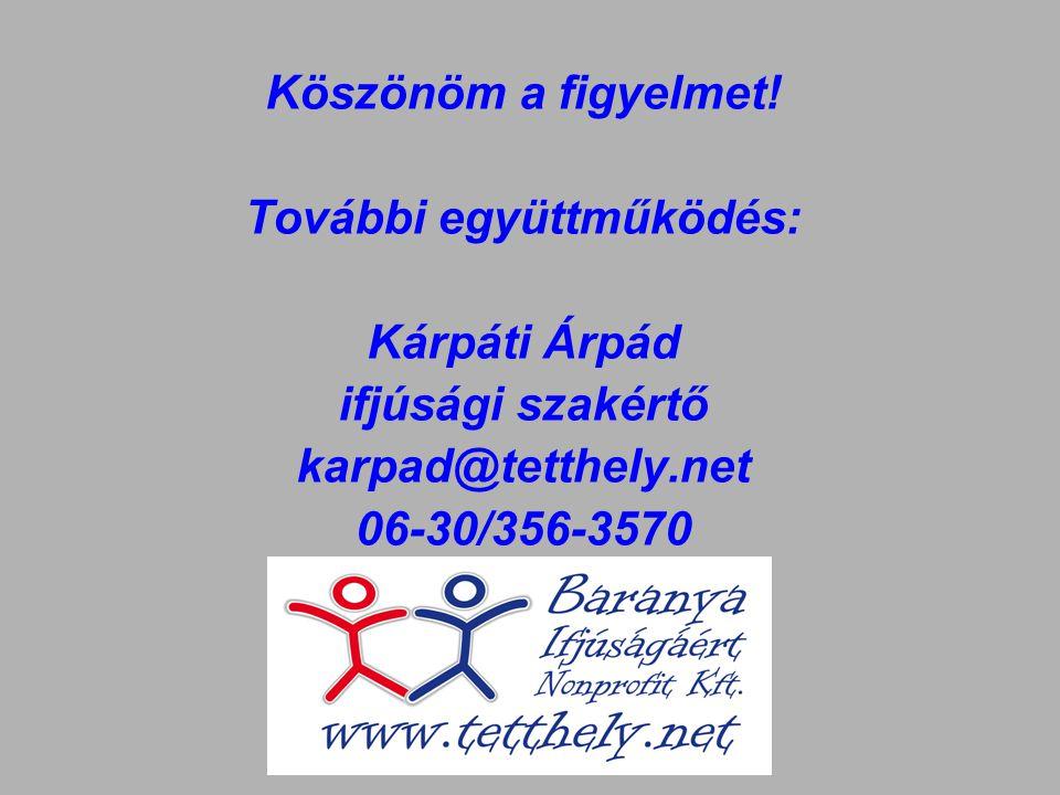 Köszönöm a figyelmet! További együttműködés: Kárpáti Árpád ifjúsági szakértő karpad@tetthely.net 06-30/356-3570