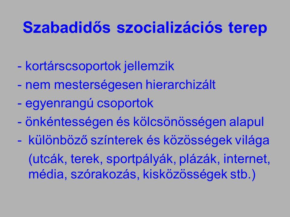 Szabadidős szocializációs terep - kortárscsoportok jellemzik - nem mesterségesen hierarchizált - egyenrangú csoportok - önkéntességen és kölcsönösségen alapul -különböző színterek és közösségek világa (utcák, terek, sportpályák, plázák, internet, média, szórakozás, kisközösségek stb.)