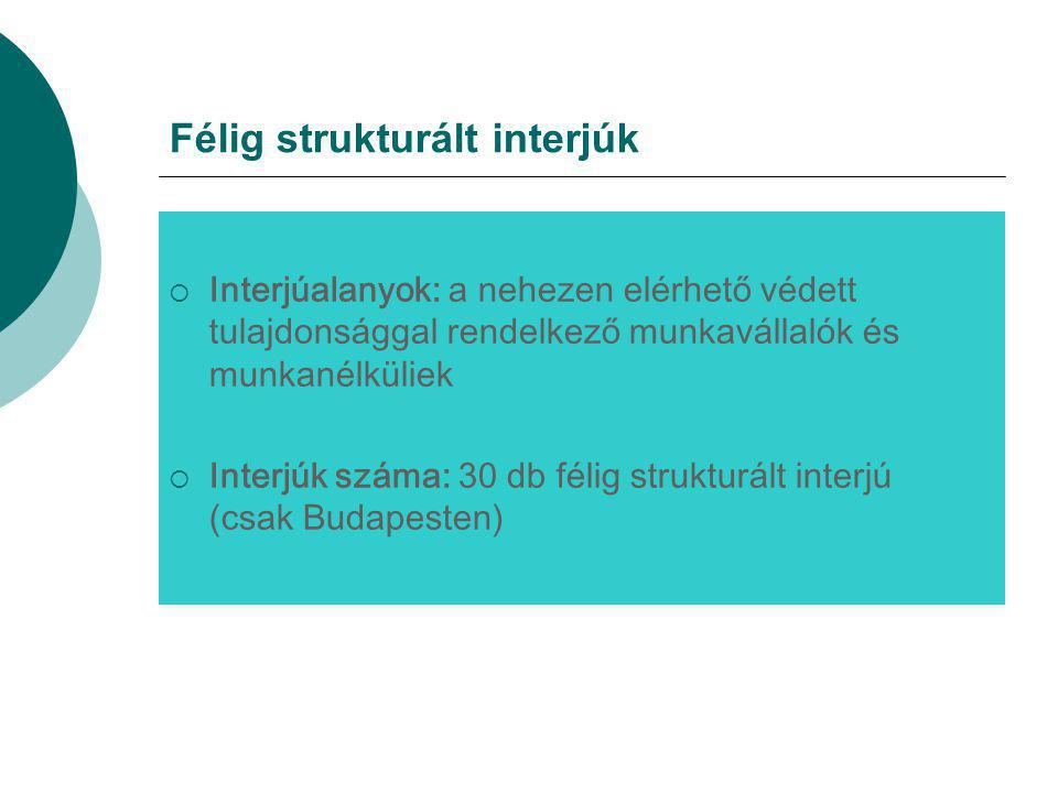 Félig strukturált interjúk  Interjúalanyok: a nehezen elérhető védett tulajdonsággal rendelkező munkavállalók és munkanélküliek  Interjúk száma: 30 db félig strukturált interjú (csak Budapesten)