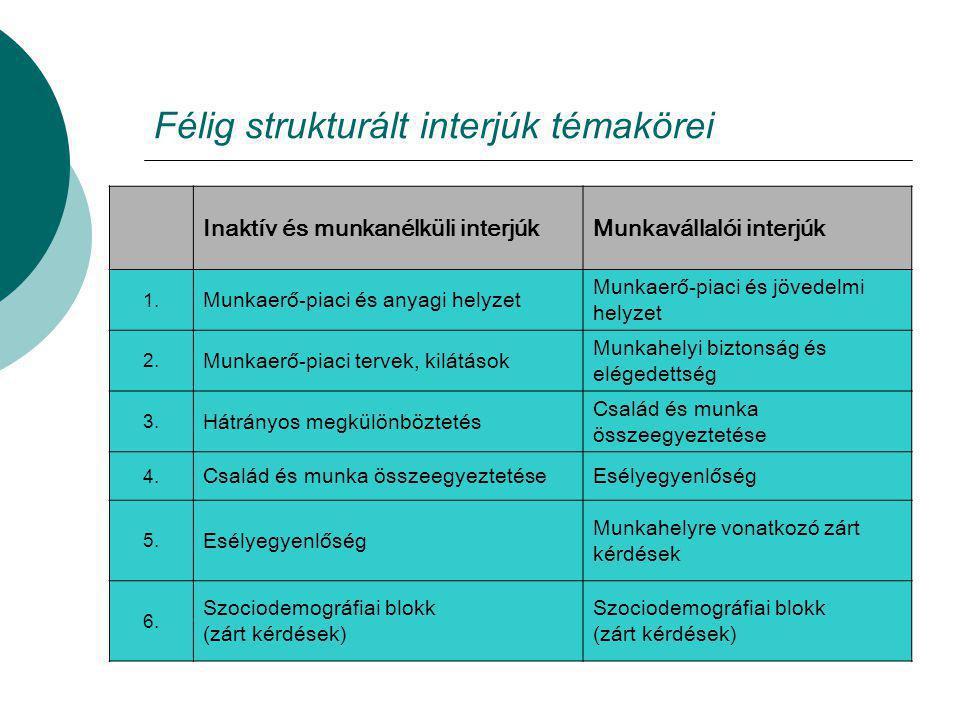 Félig strukturált interjúk témakörei Inaktív és munkanélküli interjúkMunkavállalói interjúk 1. Munkaerő-piaci és anyagi helyzet Munkaerő-piaci és jöve