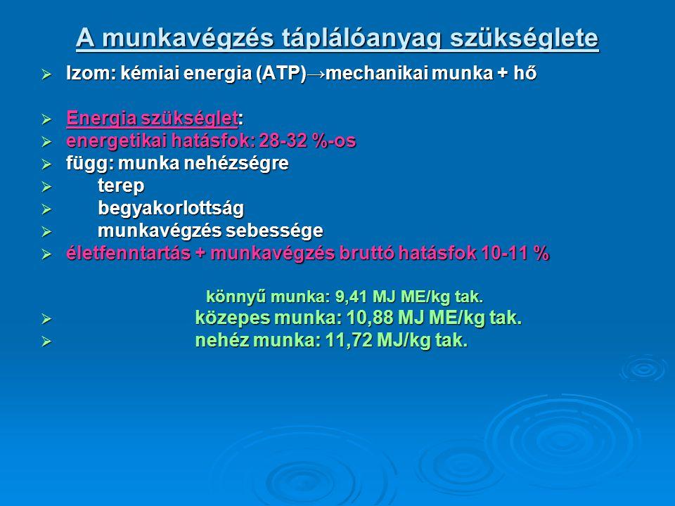 A munkavégzés táplálóanyag szükséglete  Izom: kémiai energia (ATP)→mechanikai munka + hő  Energia szükséglet:  energetikai hatásfok: 28-32 %-os  f