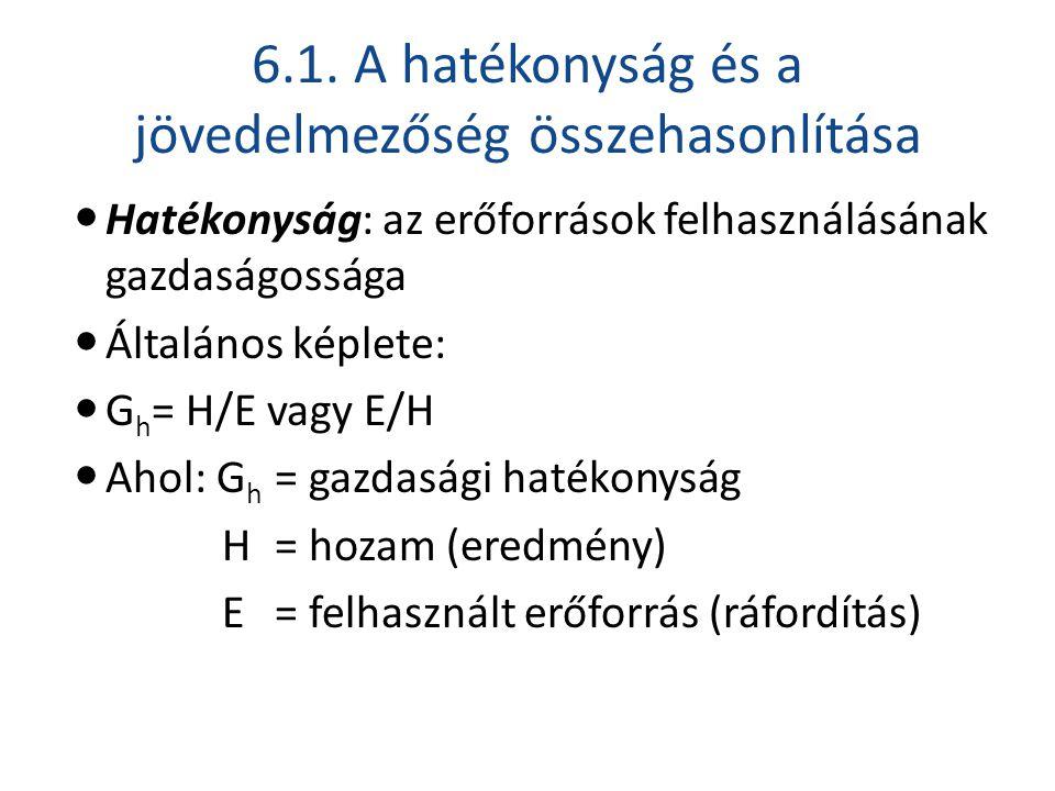 6.1. A hatékonyság és a jövedelmezőség összehasonlítása  Hatékonyság: az erőforrások felhasználásának gazdaságossága  Általános képlete:  G h = H/E