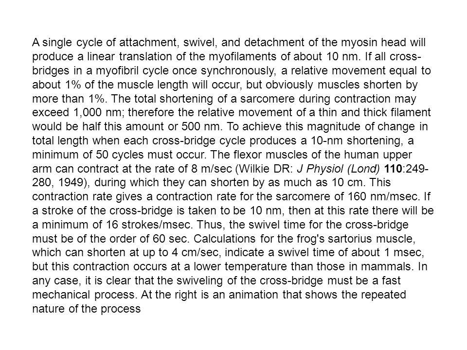 A erőkifejtés alapegysége Kereszthíd Nature 352 (25 July, 1991): pages 284 & 352,