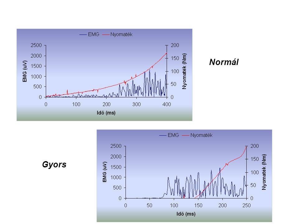 Akaratlagos izometriás erő (nyomaték) kifejtése hosszabb-rövidebb időt vehet igénybe Freund, H. (1983)