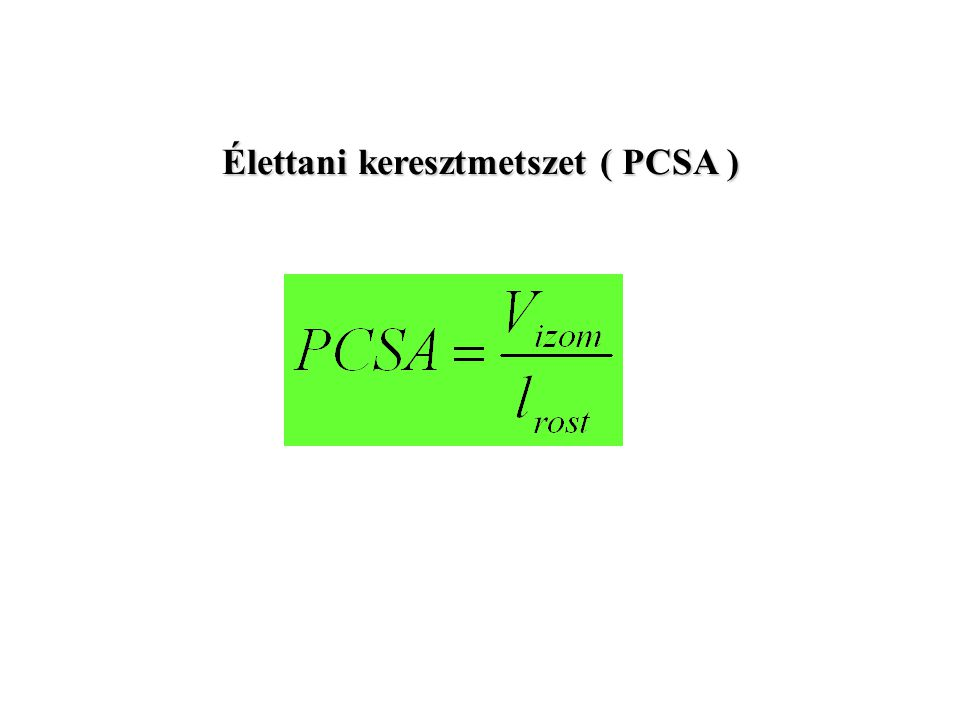 Az élettani keresztmetszet kiszámítása ( PCSA ) PCSA = izomtömeg x cos  rosthossz x sűrűség (1.067 g cm3 )