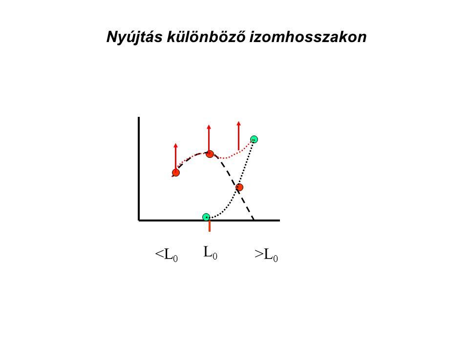 Mi az oka az izom feszülés növekedésének? • a• az elasztikus elemek ellenállása • a• a motoros egységek tüzelési frekvenciája • ú• új motoros egységek