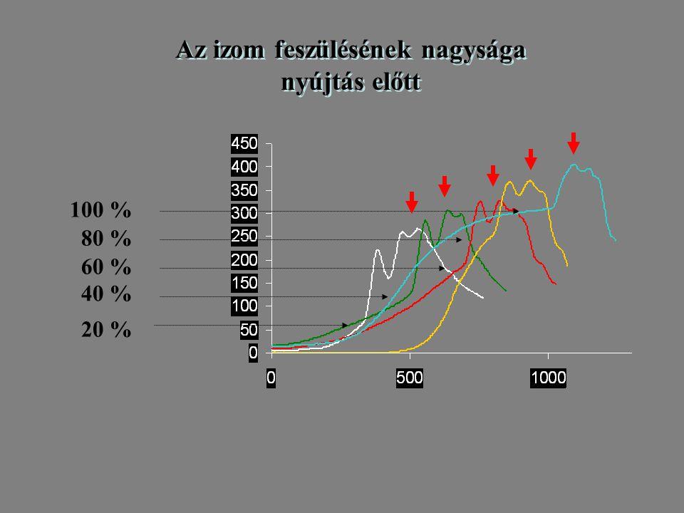 Gyors feszülésnövekedés (short range stiffness) Visszamaradó feszülés Aktív feszülés