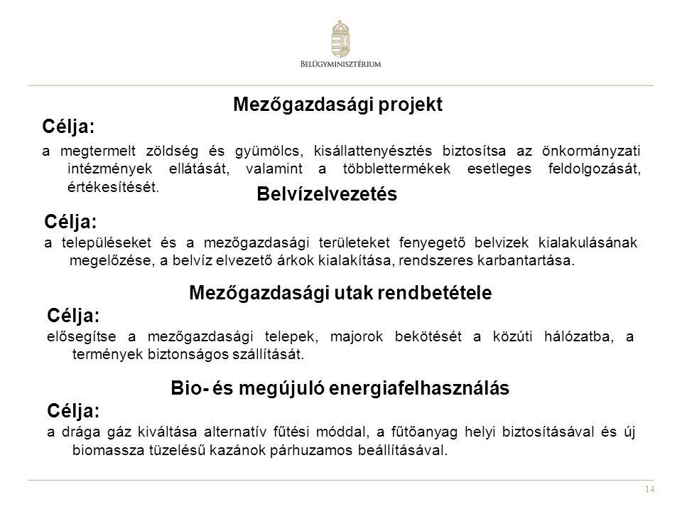 14 Mezőgazdasági projekt Célja: a megtermelt zöldség és gyümölcs, kisállattenyésztés biztosítsa az önkormányzati intézmények ellátását, valamint a töb