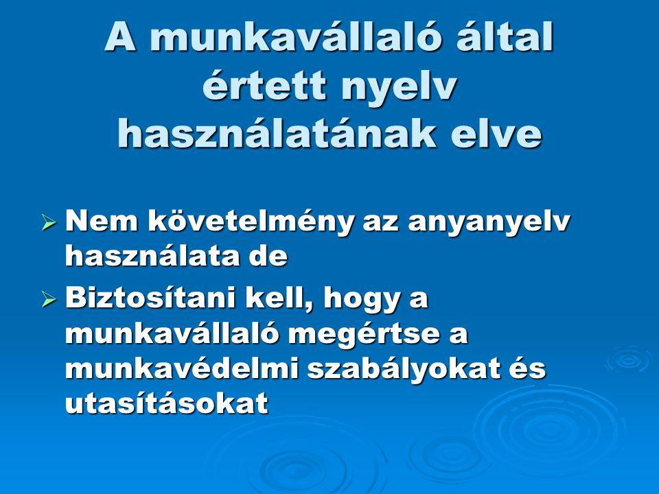 A munkavállaló által értett nyelv használatának elve  Nem követelmény az anyanyelv használata de  Biztosítani kell, hogy a munkavállaló megértse a m
