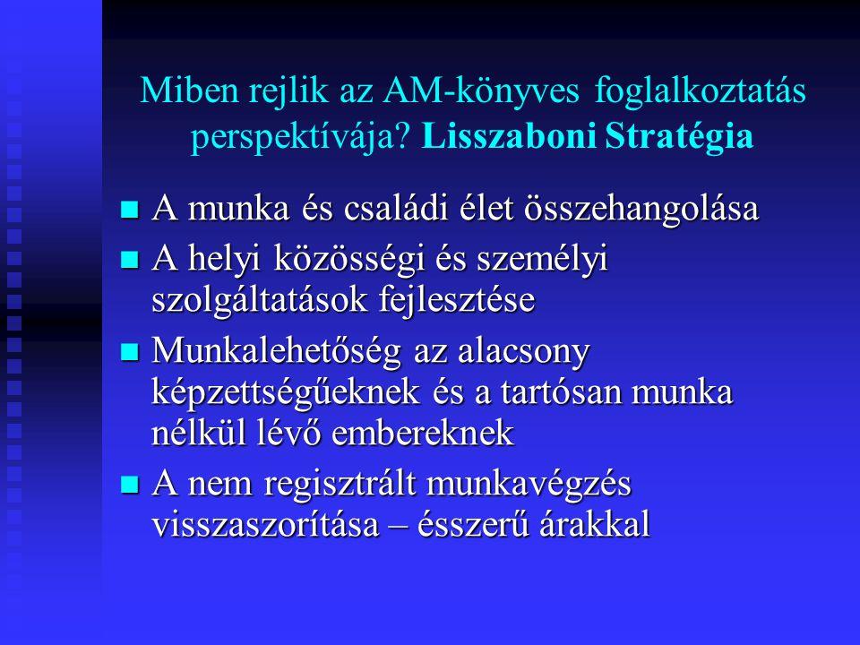 Miben rejlik az AM-könyves foglalkoztatás perspektívája? Lisszaboni Stratégia  A munka és családi élet összehangolása  A helyi közösségi és személyi