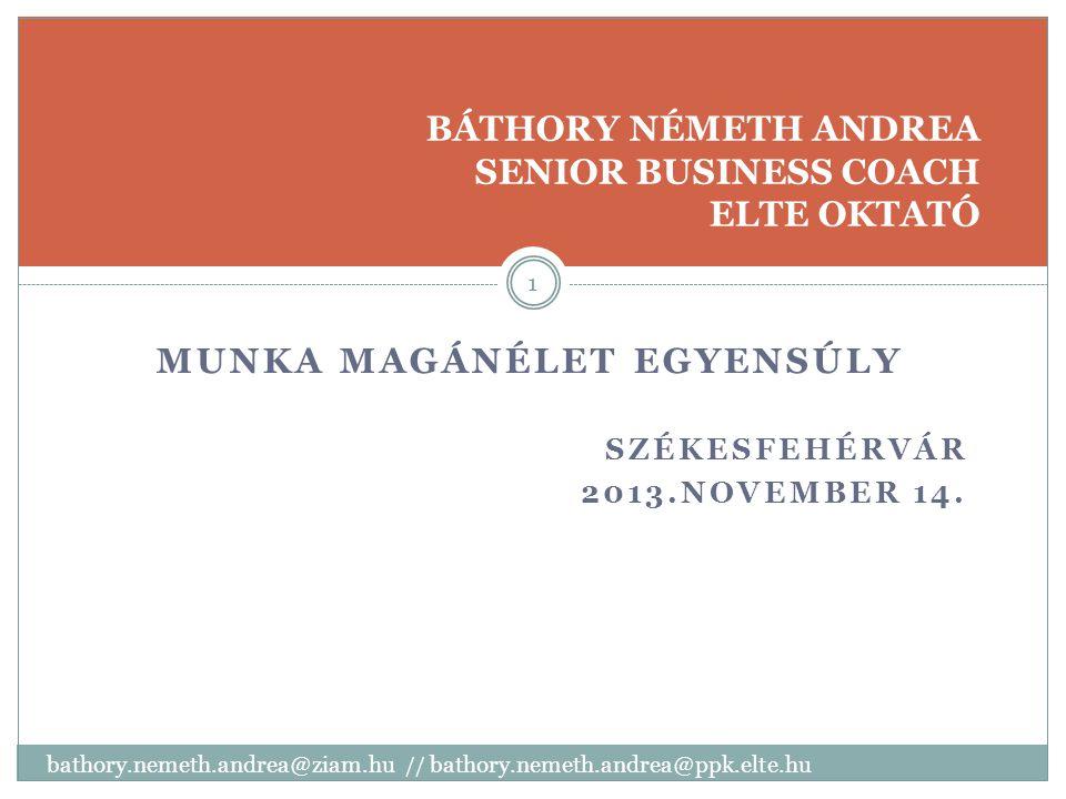 MUNKA MAGÁNÉLET EGYENSÚLY SZÉKESFEHÉRVÁR 2013.NOVEMBER 14.