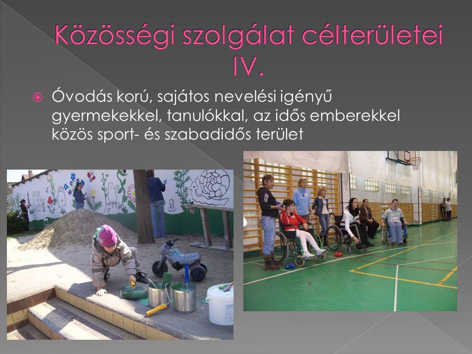 Óvodás korú, sajátos nevelési igényű gyermekekkel, tanulókkal, az idős emberekkel közös sport- és szabadidős terület