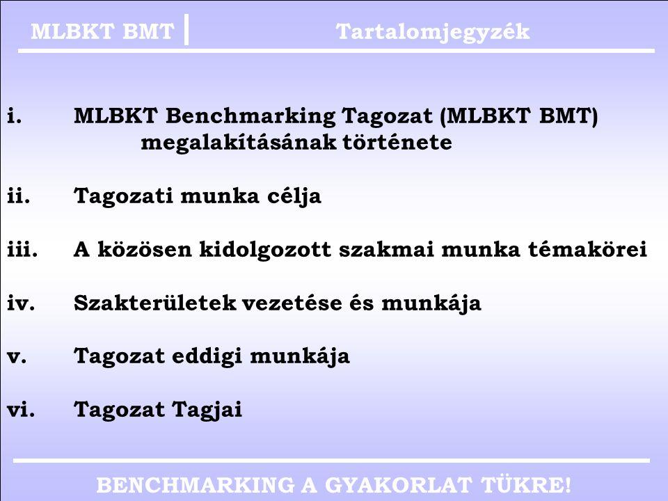 AZ MLBKT BENCHMARKING TAGOZAT BEMUTATKOZÁSA Karika Attila TVK Nyrt. back office vezető, (logisztikai operációs terület) az MLBKT Benchmarking Tagozat