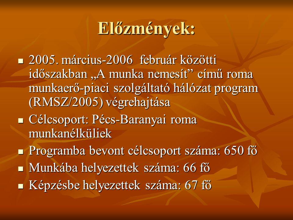 """Előzmények:  2005. március-2006 február közötti időszakban """"A munka nemesít"""" című roma munkaerő-piaci szolgáltató hálózat program (RMSZ/2005) végreha"""
