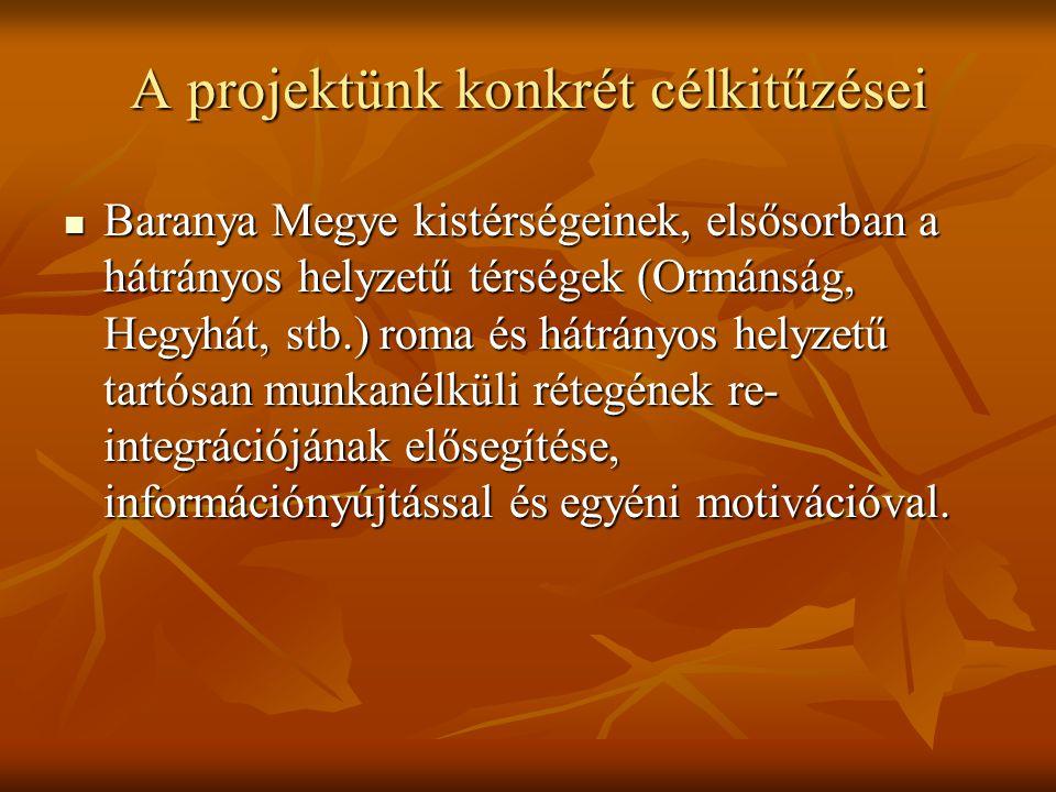 Célcsoport:  Pécs-Baranyai aktívkorú cigány munkanélküliek  Pályakezdő cigány fiatalok  45 év feletti cigány munkanélküliek