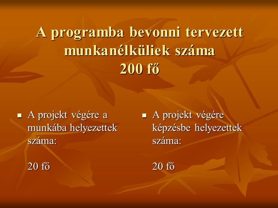 A programba bevonni tervezett munkanélküliek száma 200 fő  A projekt végére a munkába helyezettek száma: 20 fő  A projekt végére képzésbe helyezette