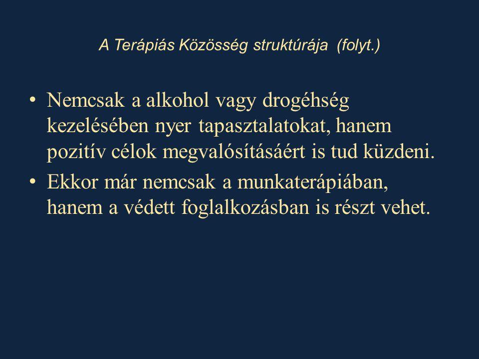 • Nemcsak a alkohol vagy drogéhség kezelésében nyer tapasztalatokat, hanem pozitív célok megvalósításáért is tud küzdeni. • Ekkor már nemcsak a munkat