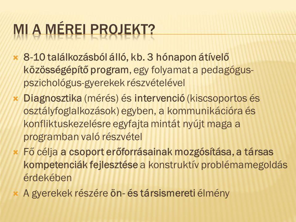  8-10 találkozásból álló, kb. 3 hónapon átívelő közösségépítő program, egy folyamat a pedagógus- pszichológus-gyerekek részvételével  Diagnosztika (