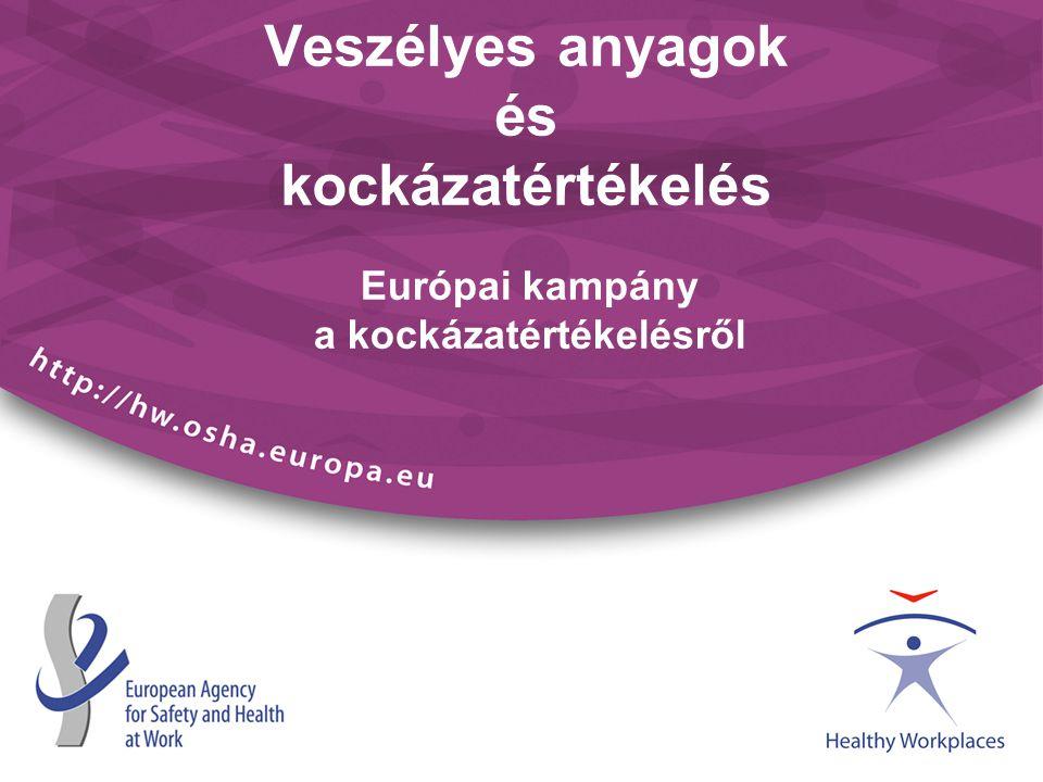 Veszélyes anyagok és kockázatértékelés Európai kampány a kockázatértékelésről