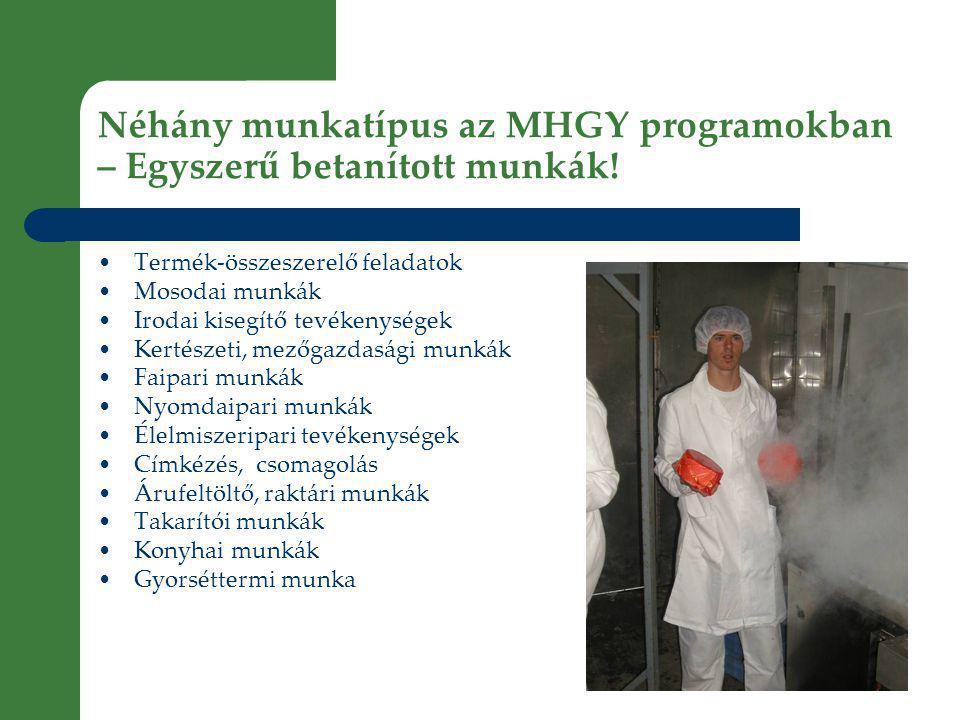 Néhány munkatípus az MHGY programokban – Egyszerű betanított munkák.