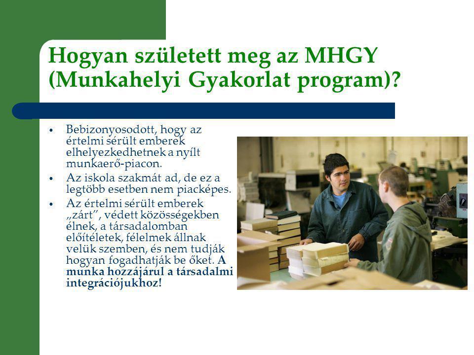 Hogyan született meg az MHGY (Munkahelyi Gyakorlat program).
