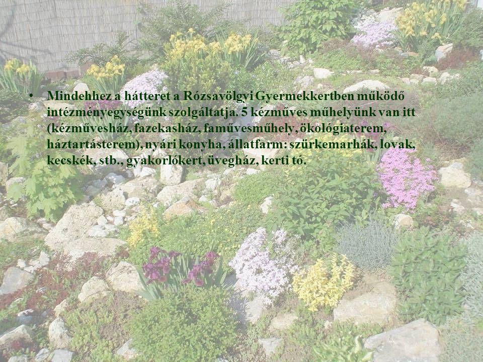 • Mindehhez a hátteret a Rózsavölgyi Gyermekkertben működő intézményegységünk szolgáltatja.