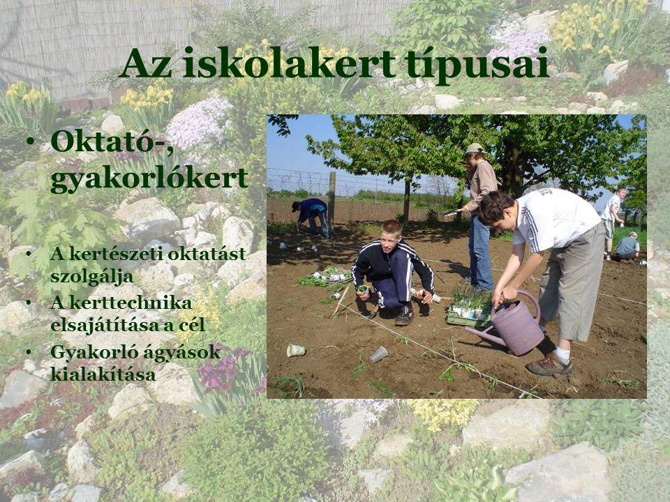 Az iskolakert típusai • Oktató-, gyakorlókert • A kertészeti oktatást szolgálja • A kerttechnika elsajátítása a cél • Gyakorló ágyások kialakítása