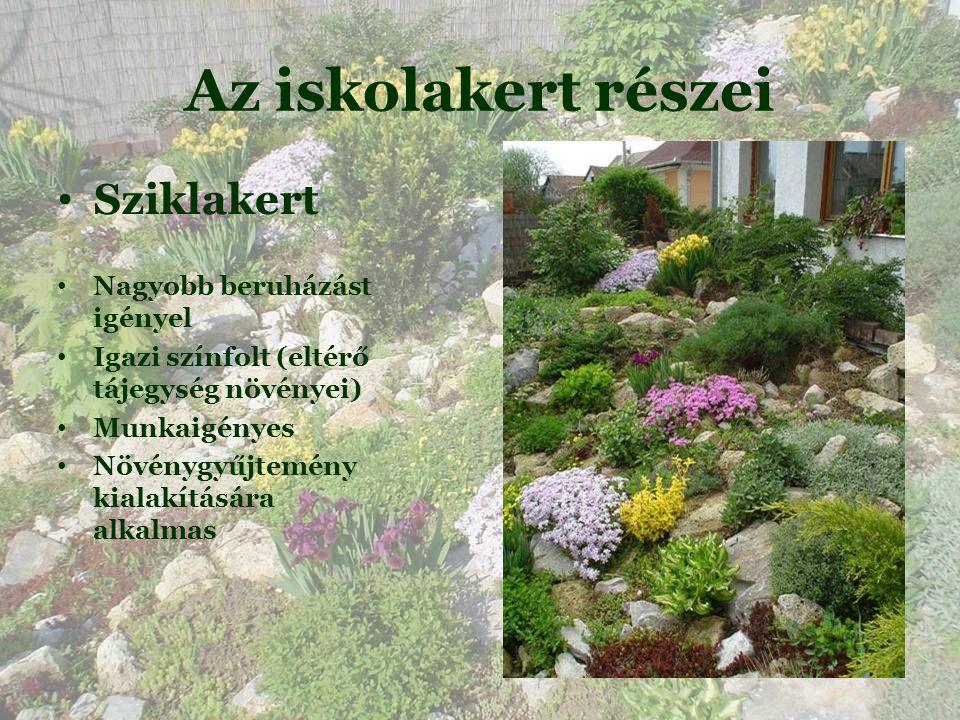 Az iskolakert részei • Sziklakert • Nagyobb beruházást igényel • Igazi színfolt (eltérő tájegység növényei)  • Munkaigényes • Növénygyűjtemény kialakítására alkalmas