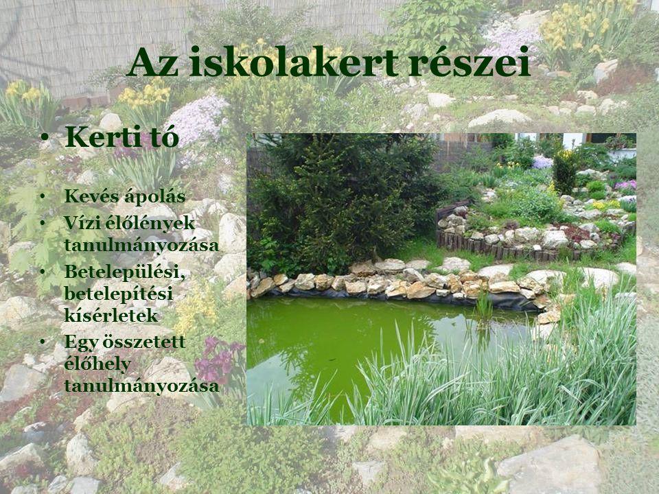 Az iskolakert részei • Kerti tó • Kevés ápolás • Vízi élőlények tanulmányozása • Betelepülési, betelepítési kísérletek • Egy összetett élőhely tanulmányozása