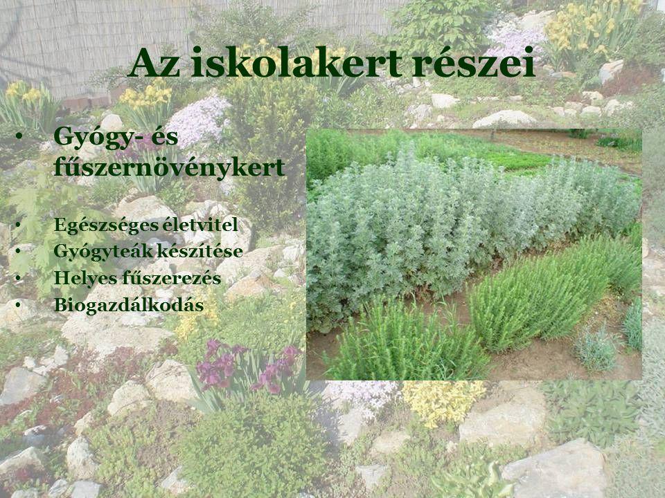 Az iskolakert részei • Gyógy- és fűszernövénykert • Egészséges életvitel • Gyógyteák készítése • Helyes fűszerezés • Biogazdálkodás