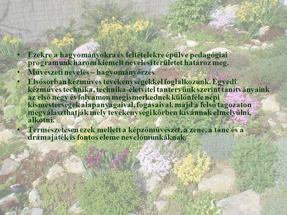 Az iskolakert típusai • Pihenőkert • Kertben való felü- dülés • Ülőhelyek, játszó- helyek kialakítása • Grillkert, szalonna- sütő • Gyepfelület