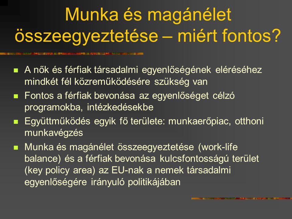 Szakmapolitikai javaslatok  Átgondolt koncepció (foglalkoztatáspolitika, demográfia, gyermekvállalás, nemek társadalmi egyenlősége)  Komplex változások (munkahely, oktatás, média, család, szociálpolitika szerepe)  Egyértelmű iránymutatások a kormányzat részéről a gazdasági környezet számára  Jogszabályi támogatás a családbarát intézkedéseknek  Alternatív munkavállalási formák bevezetésének támogatása (pl.