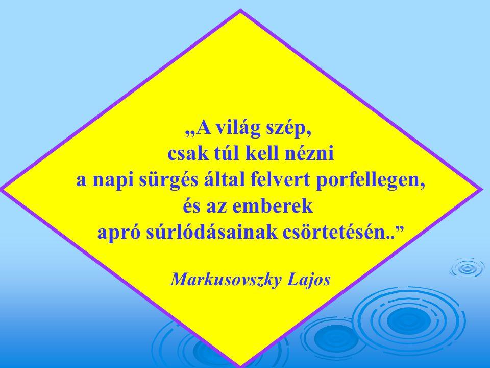 """""""A világ szép, csak túl kell nézni a napi sürgés által felvert porfellegen, és az emberek apró súrlódásainak csörtetésén.. Markusovszky Lajos"""